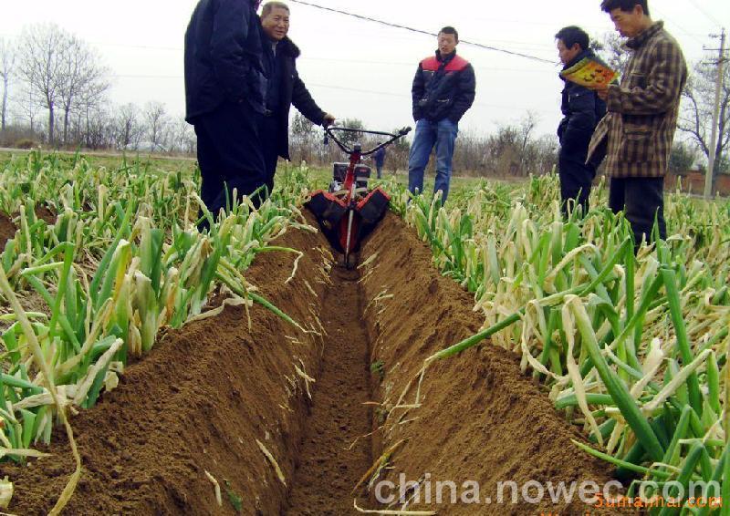 广西甘蔗培土机甘蔗培土施肥机视频最好的甘蔗培土机视频