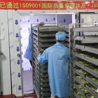 郑州中联热科空气能热风循环烘干设备很受欢迎