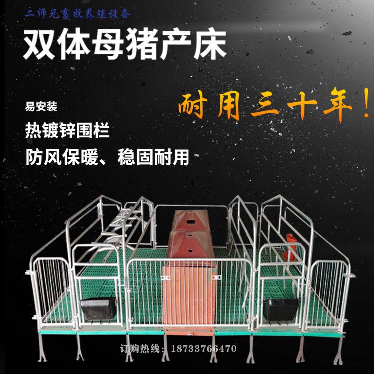 猪用母猪产床两用一体母猪产床定位栏分娩双体母猪产床