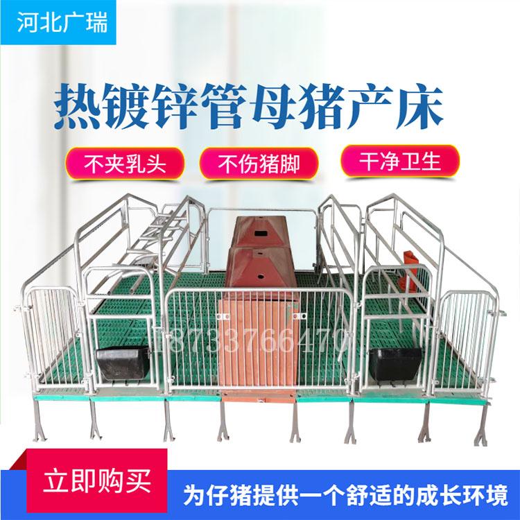 母猪产床分娩床复合漏粪板养猪设备