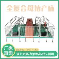双体母猪产床分娩床 复合漏粪板 养猪场设备