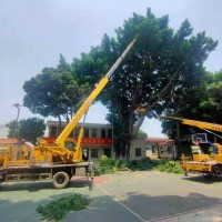 广州祥顺20米高空作业车出租,专业园林砍树树枝修剪