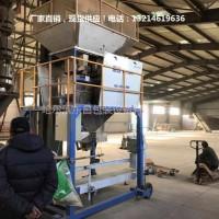 吉林省四平市亚麻籽一人操作称重打包机多少钱